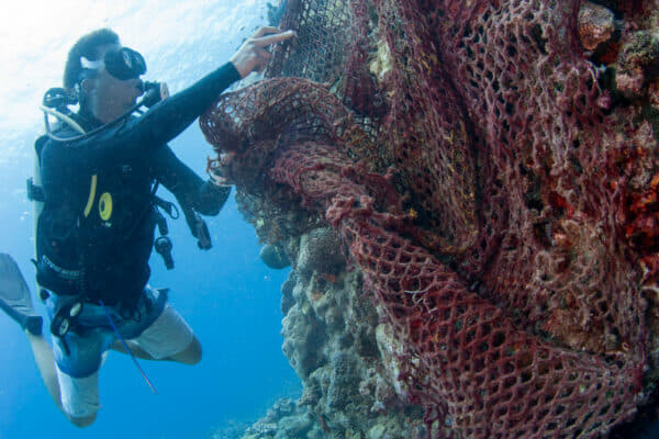 A Reef Guardian researcher removing a ghost net from the reef