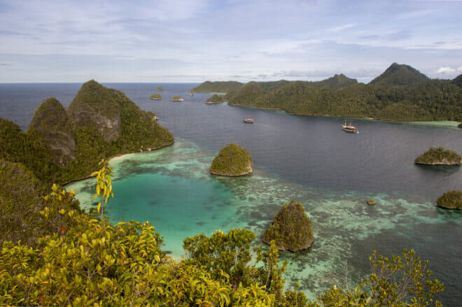View from the top of one of the Wayag Islands in Raja Ampat